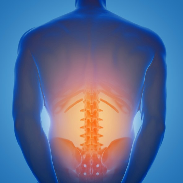 Back pain | Chiropractic Pain Relief